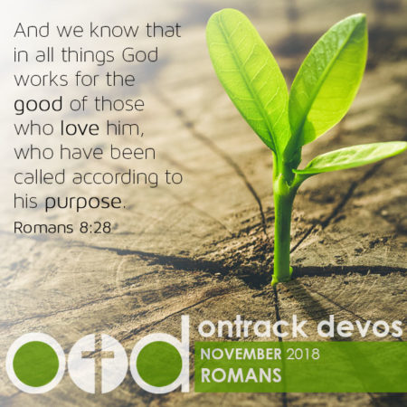 On Track Devotions – November (Romans)